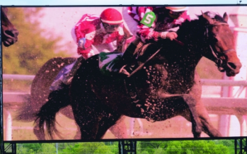 Panasonic Video Board at Kentucky Derby